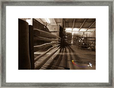 Shearing Shed Framed Print by Michael Wignall