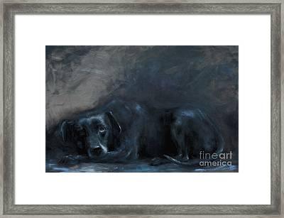 Sheba- Portrait Of A Homeless Man's Beloved Pet Framed Print by Stella Violano
