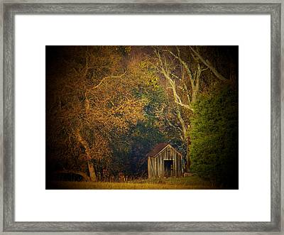 Shed And Trees Framed Print by Joyce Kimble Smith