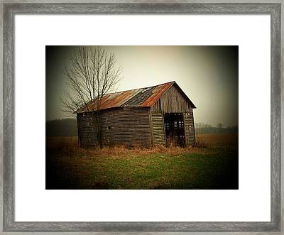 Shed In Pasture Framed Print by Michael L Kimble