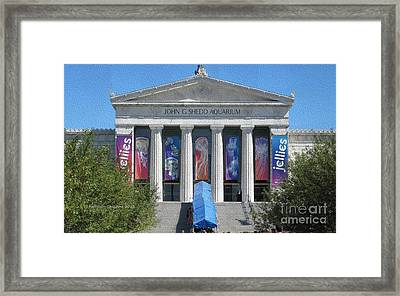 Framed Print featuring the photograph Shedd Aquarium-1 by Kathie Chicoine