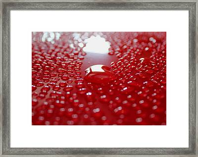 Shedding Water Framed Print