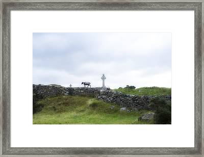 Sheep And Cross Framed Print