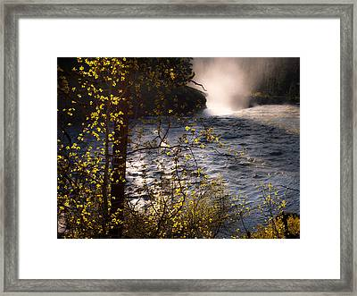 Sheep Falls Bend Framed Print