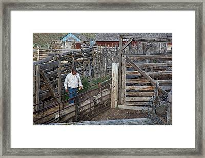 Sheep Farming Framed Print by Jim West