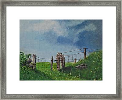 Sheep Field Framed Print by Barbara McDevitt
