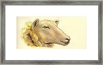 Sheep Head Study Framed Print by Juan  Bosco