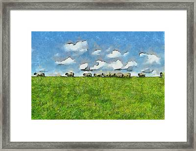 Sheep Herd Framed Print by Ayse Deniz