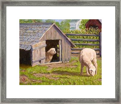 Framed Print featuring the painting Sheep House by Joe Bergholm