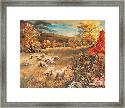Sheep In October's Field Framed Print by Joy Nichols