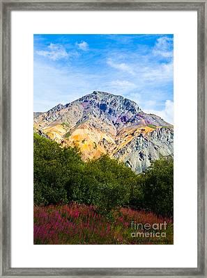 Sheep Mountain Alaska   Framed Print