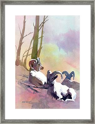 Sheep Shape Framed Print by Kris Parins