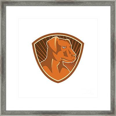 Sheepdog Border Collie Shield Retro Framed Print