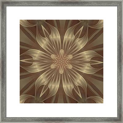 Sheer Linen Framed Print