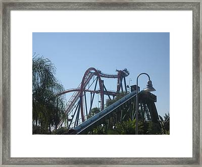 Sheikra Roller Coaster - Busch Gardens Tampa - 01131 Framed Print by DC Photographer
