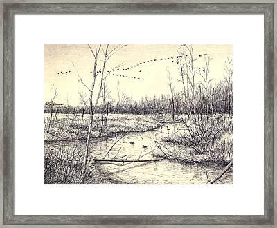 Shelby Swamps/ Framed Print by Arthur Barnes