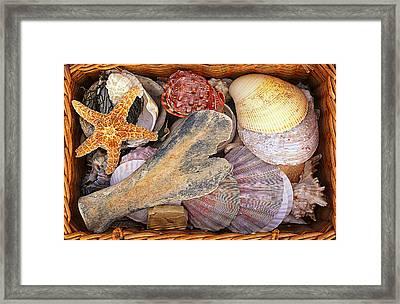 Shell Basket Framed Print