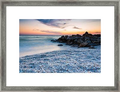 Shell Beach Framed Print by Adam Pender