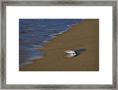 Shell By The Shore Framed Print