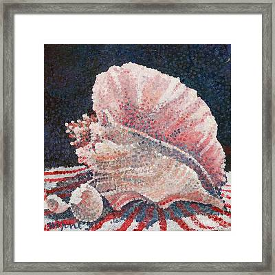 Shell Collection Framed Print by Micheal Jones
