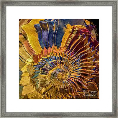 Shell Explosion Framed Print