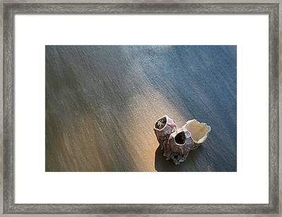 Shell House Framed Print by Paulette Maffucci