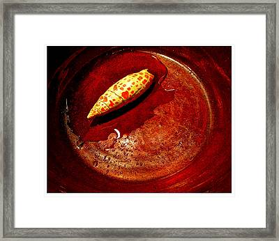 Shell In Redware Bowl Framed Print
