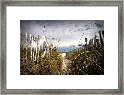 Shell Island Beach Access Framed Print by Phil Mancuso