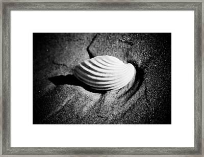 Shell On Sand Black And White Photo Framed Print by Raimond Klavins