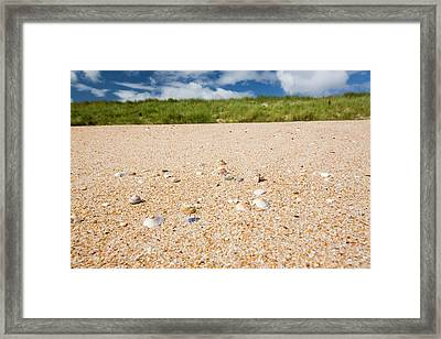 Shell Sand On The Beach With Limpet Shell Framed Print by Ashley Cooper