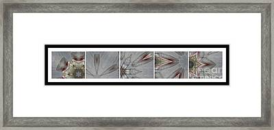 Shell Shock Pink Pentaptych  Framed Print by Barbara Griffin