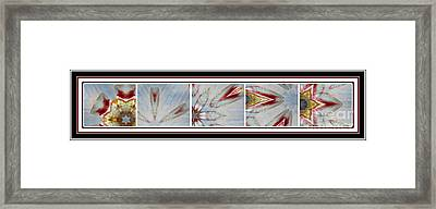 Shell Shock Red Pentaptych Framed Print by Barbara Griffin