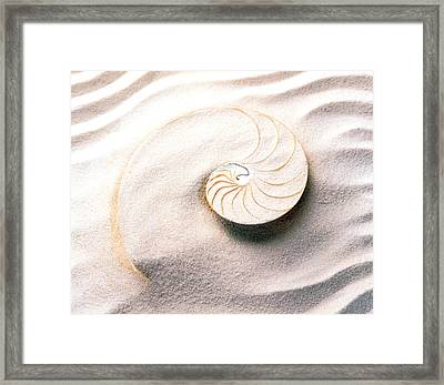 Shell Spiraling Into Wavy Sand Pattern Framed Print by Panoramic Images