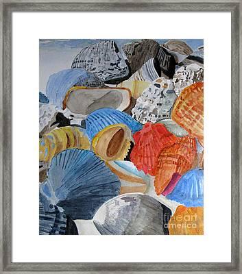 Shellers Delight Framed Print