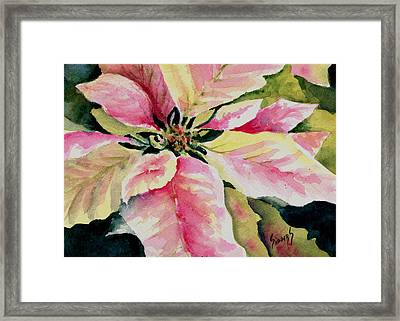 Shelly's Poinsettia Framed Print