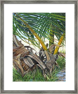 Sheltering Palms Framed Print