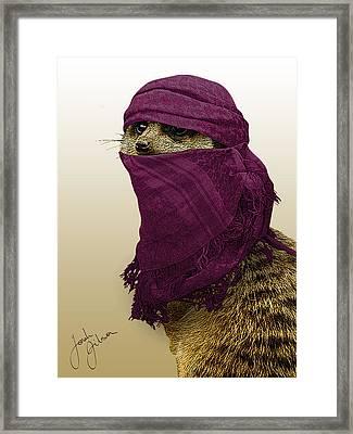 Shemagh Kat Framed Print