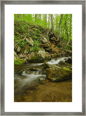 Shenandoah Stream No. 2 Framed Print