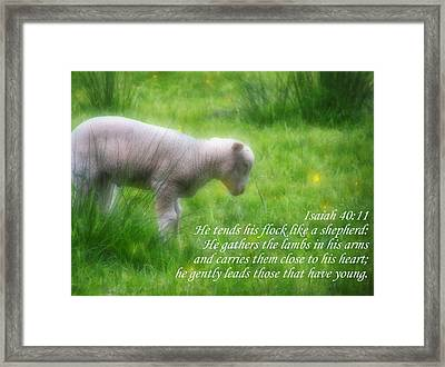 Shepherd Framed Print by Angelina Vick