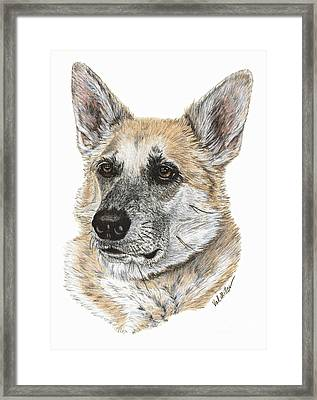 Shepherd Beauty Framed Print by Val Miller