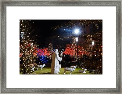 Shepherds  At Temple Square Framed Print