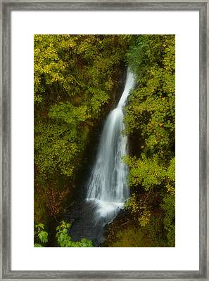 Shepperds Dell Dreams Framed Print