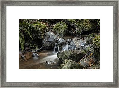 Sherbrooke Creek Framed Print