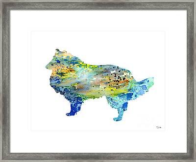 Shetland Sheepdog Framed Print