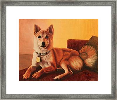 Shiba Inu Portrait Framed Print