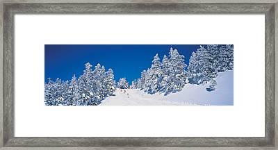 Shiga Kogen Nagano Japan Framed Print by Panoramic Images