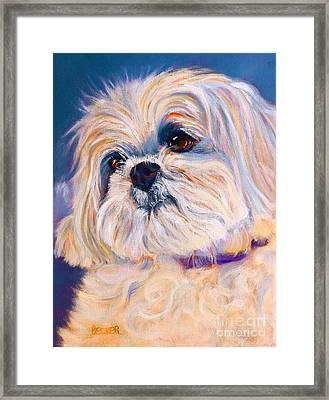 Shih Tzu Rescue Framed Print by Susan A Becker
