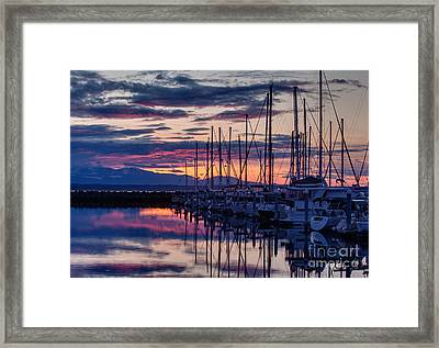 Shilshole Olympic Mountains Sunset Framed Print by Mike Reid