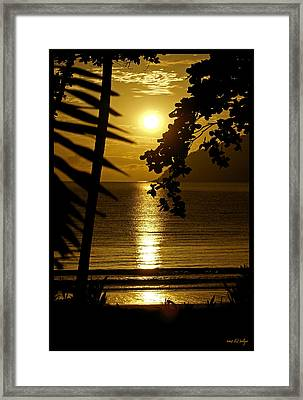 Shimmer Framed Print by Holly Kempe