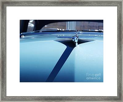 Shine And Fly Framed Print by Carlos Magalhaes